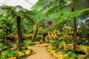 Dallas epoxy pros green garden Dallas